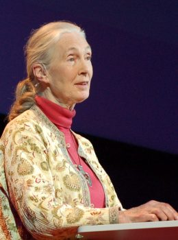 Jane Goodall her religion politics and belief in Bigfoot
